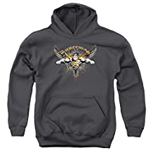 Superman DC Comics Soaring Winged Cape Big Boys Youth Pull-Over Hoodie