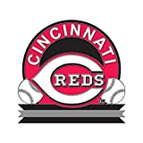 MLB Cincinnati Reds 56862091 Collector Pin Jewelry Card