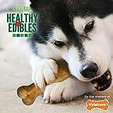 Nylabone Healthy Edibles All Natural Long Lasting