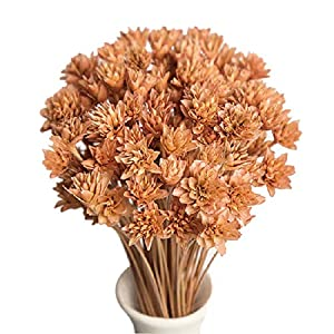 """90 Stems Dry Flowers Brazilian Import Small Mountain Flower Dried Small Flowers Decorative Mini Dry Bouquet for Wedding Floral Arrangements, 12"""" -16"""" Tall Home Decorations 9"""