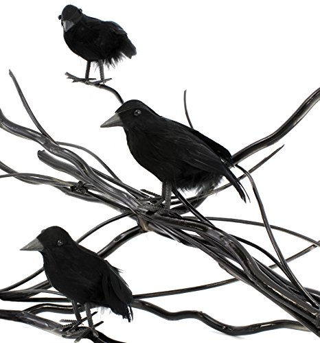 Realistic Feathered Black Crows (3 Pack), 3 Different Styles, 4