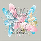 Buzzin' Fly Volume 2