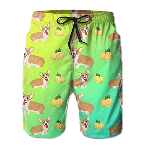 Welsh Corgi Dog Puppy And Lemon Men's Tropical Quick Dry Board Shorts Bathing Suits Swimwear Volley Beach Trunks