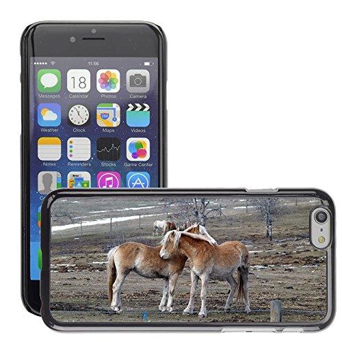 "Just Phone Cases Hard plastica indietro Case Custodie Cover pelle protettiva Per // M00127782 Islaender Chevaux Animaux champs // Apple iPhone 6 PLUS 5.5"""