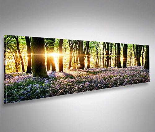 Bild auf Leinwand 120x40cm Lavendel im Wald Panorama Topseller Topseller Kunstdruck von islandburner XXL Poster Leinwandbilder Wandbilder