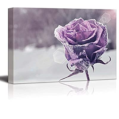 Canvas Prints Wall Art - Beautiful Purple Frozen Rose | Modern Wall Decor/Home Decoration Stretched Gallery Canvas Wrap Giclee Print & Ready to Hang - 24