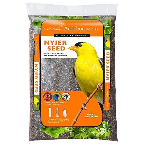 National Audubon Society 8-lb Signature Harvest Nyjer Seed (Thistle)