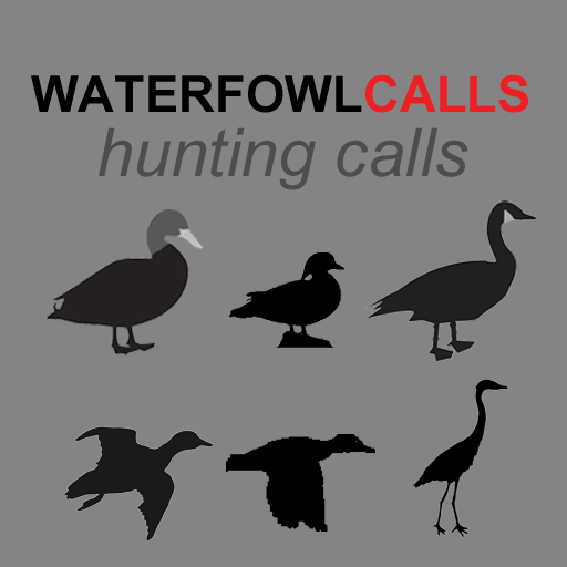 - The Ultimate Waterfowl Hunting Calls App For Ducks, Geese & Sandhill Cranes - BLUETOOTH COMPATIBLE ()