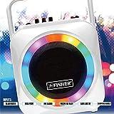 Fisher Portable Karaoke Speaker System with