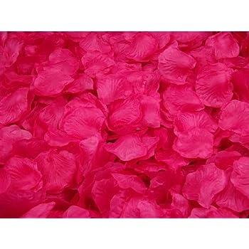 Amazon 1000 fuchsia hot pink silk rose petals wedding flower crazycity new arrival 2000pcs colorful silk rose petals artificial flower bridal shower favors for wedding party supplies decoration dark hot pink mightylinksfo