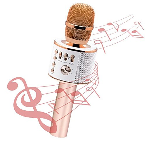 Wireless Karaoke Microphone LEKAMXING Wireless Karaoke For Holiday gifts & Birthday Day Party Portable Hand Speaker Stereo Player KTV Karaoke Mic for iPhone/Android/iPad/Sony/TV and All Smartphone(Ros (Red Lcd Card Memory)