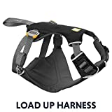 RUFFWEAR - Load Up, Dog Car Harness with Strength-Rated Hardware, Secure Vehicle Restraint, Universal Seat Belt Attachment, Obsidian Black, Medium