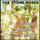 Turns Into Stone [VINYL]