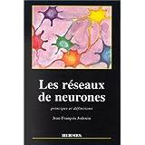 les reseaux de neurones: principes et definitions