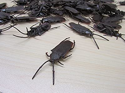Creepy Cockroach Party Favor 72 Count - Realistic Roach Set Halloween Decoration - Prank Toy for Kid's Party - Ages 3 and Up
