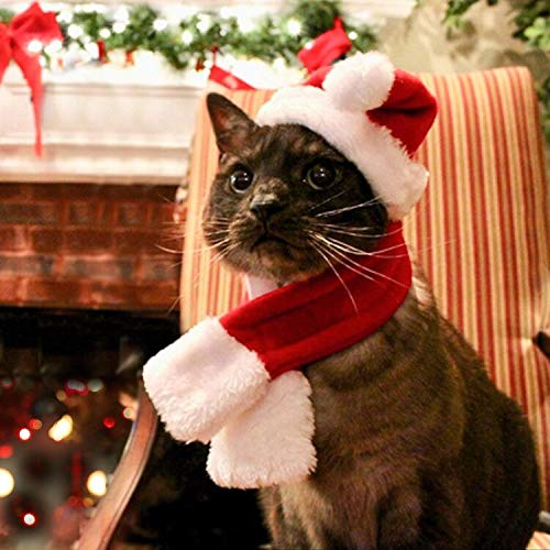 Namsan Pet Christmas Costumes - Cat Dog Santa Cap Costume Christmas Hat Suitfit for Christmas with Santa Hat and Scarf,Red