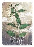 Magickal Herb Oracle: Secret Nature Magick