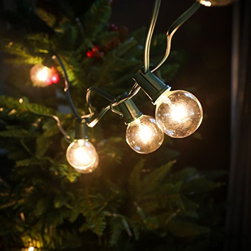 Set of 10 Glass ST40 Edison Style Bulb String Lights (Globe) by Festival Depot