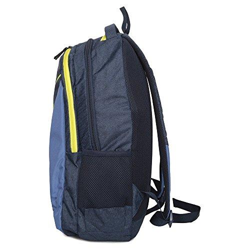 Fastrack 32,35L blau casual Rucksack (a0647nbl01)