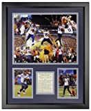"""Legends Never Die 2014 Seattle Seahawks Superbowl XLVIII Champions Framed Photo Collage, 16"""" x 20"""""""