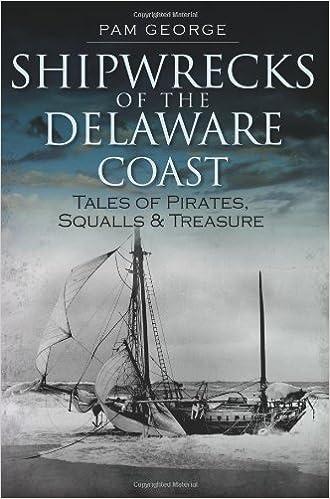 Book Shipwrecks of the Delaware Coast: Tales of Pirates, Squalls & Treasure (Disaster)