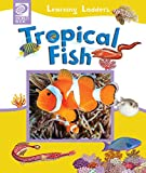 Tropical Fish (Learning Ladders Book 3)