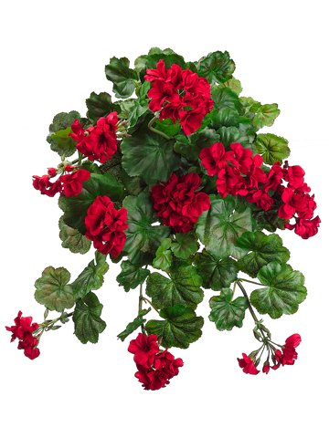 Water-Resistant-Hanging-Geranium-Bush-in-Red-22-Long