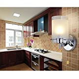 Elitlife Modern Wall Lights Silver Chrome & White