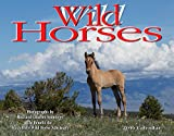 img - for Wild Horses 2016 Calendar 11x14 book / textbook / text book
