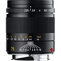 Leica SUMMARIT-M 75mm f/2.5 (E46) Ultra Compact Short Telephoto Lens Explained Review Image