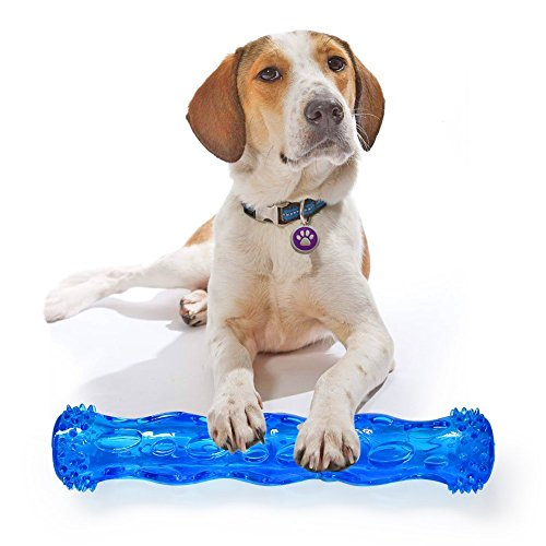 TPR Squeak Chew Toy for Aggressive Chewers Durable Rubber Tooth Cleaning Toy for Dogs Bite Resistant Floating & Suitable For Pool Use Dog chew toy Indestructible for Puppy (L, Blue)