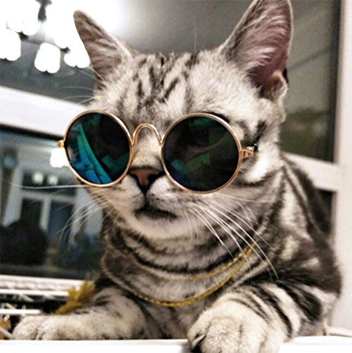 51CS%2Bg08tXL - Cool Stylish And Funny Cute Pet Sunglasses Classic Retro Circular Metal Prince Sunglasses for Cats or Small Dogs By Cydnlive(Color may vary)
