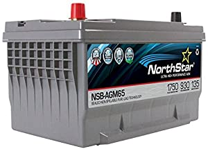 5. NORTHSTAR Pure Lead Automotive Group 65 Battery NSB-AGM65