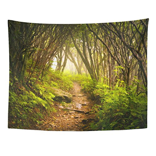 Emvency Tapestry Craggy Gardens Appalachian Hiking Trail Fog Blue Ridge Parkway Home Decor Wall Hanging for Living Room Bedroom Dorm 60x80 Inches