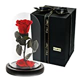 MAYMII 100% Handmade Preserved Never Withered Real Rose Flower With Real Fallen Petals, in Luxury Glass Dome Gift for Lover,Valentine's Day, Birthday , Wedding - Inspired By Beauty And The Beast