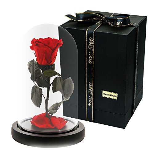 Handmade Preserved Never Withered Real Rose Flower With Real Fallen Petals, in Luxury Glass Dome Gift for Lover, Valentine's Day, Anniversary, Birthday , Wedding - Inspired By Beauty And The - Glasses To Sun Clean How