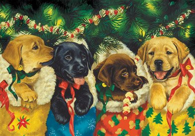Puppy Christmas Cards (Vermont Christmas Company Puppies Advent)