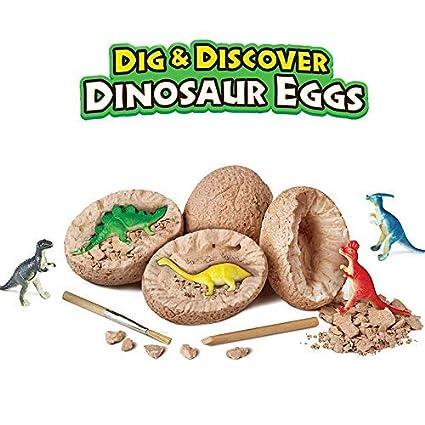 Amazon.com: Likary - Juego de 12 huevos de dinosaurio, juego ...