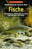 Fische. Die heimischen Süßwasserfische sowie Arten der Nord- und Ostsee
