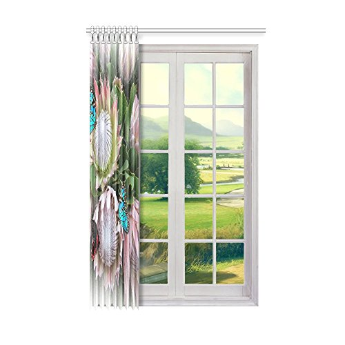 Jc-Dress Window Curtain King Protea And South Africa