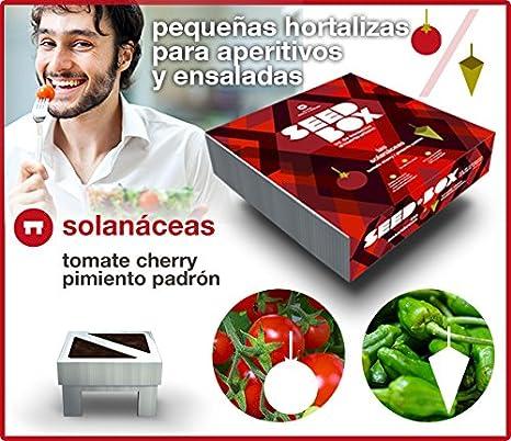 SEED BOX KIT HUERTO URBANO SOLANACEAS TOMATES CHERRY PIMIENTOS DE ...
