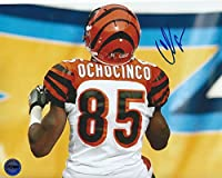 Chad Ochocinco Johnson Cincinnati Bengals Autographed 8x10 Photo FSG Authentic 2