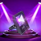 Exulight UV LED Flood Light, 10W High Power UV