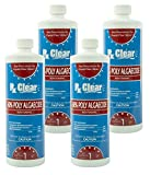 Rx Clear Algaecide 60 Plus | Non-Foaming Formula...