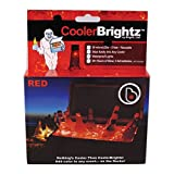 Brightz, Ltd. Cooler Brightz LED Lights Cooler Accessory