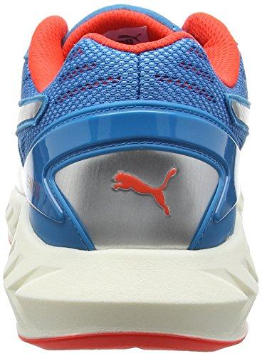 red Ultimate Multicolore Puma Chaussures De Running Compétition atomicbleu Blast Ignite Homme ZwqqTxzU5