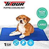 Yitour Dog Cooling Freezing Pad Best,Non-Toxic, Safe, Stay Pet,Large Cat,Animal Body Cool Comfortable Portable Durable Mat for Outdoor,Travel,Training,Car Seats,Crate,Bed,Kennel,Easy Maintain (L)