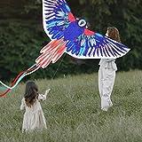 """JEKOSEN 2021 New 55"""" Parrot Huge Kite for Kids and"""