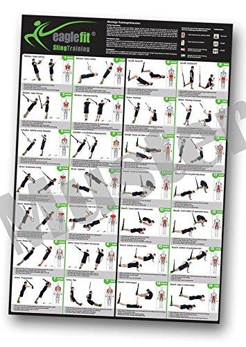 eaglefit® Sling Trainer Übungsposter mit 28 Übungen A1 Format