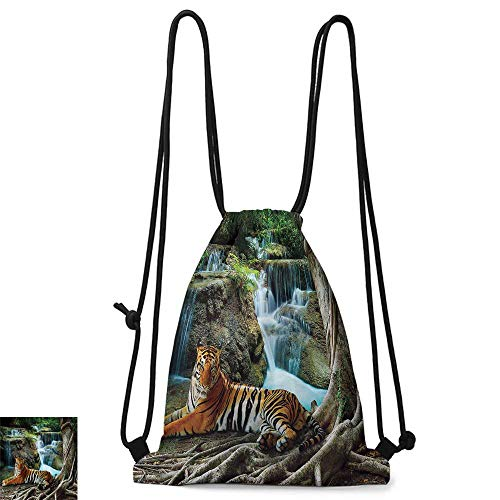 """Personality backpack Masquerade Decorations Collection Golden Carnival Mask with Feathers Mystery Masque Costume Classic Design W14""""xL18"""" Suitable for sports, travel, climbing"""